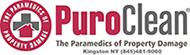 Puroclean sponsors the Shamrock Run